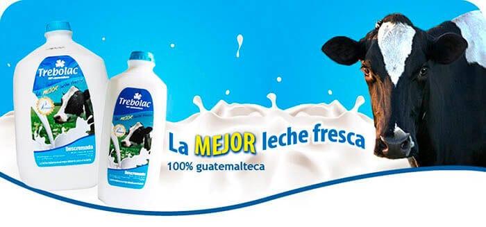 TREBOLAC empleos, LACTEOS en Guatemala